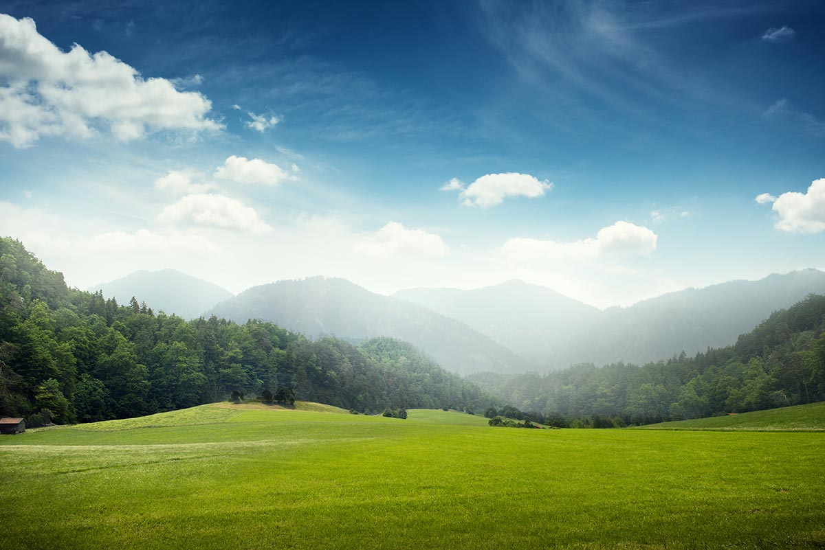 green meadow with mountains