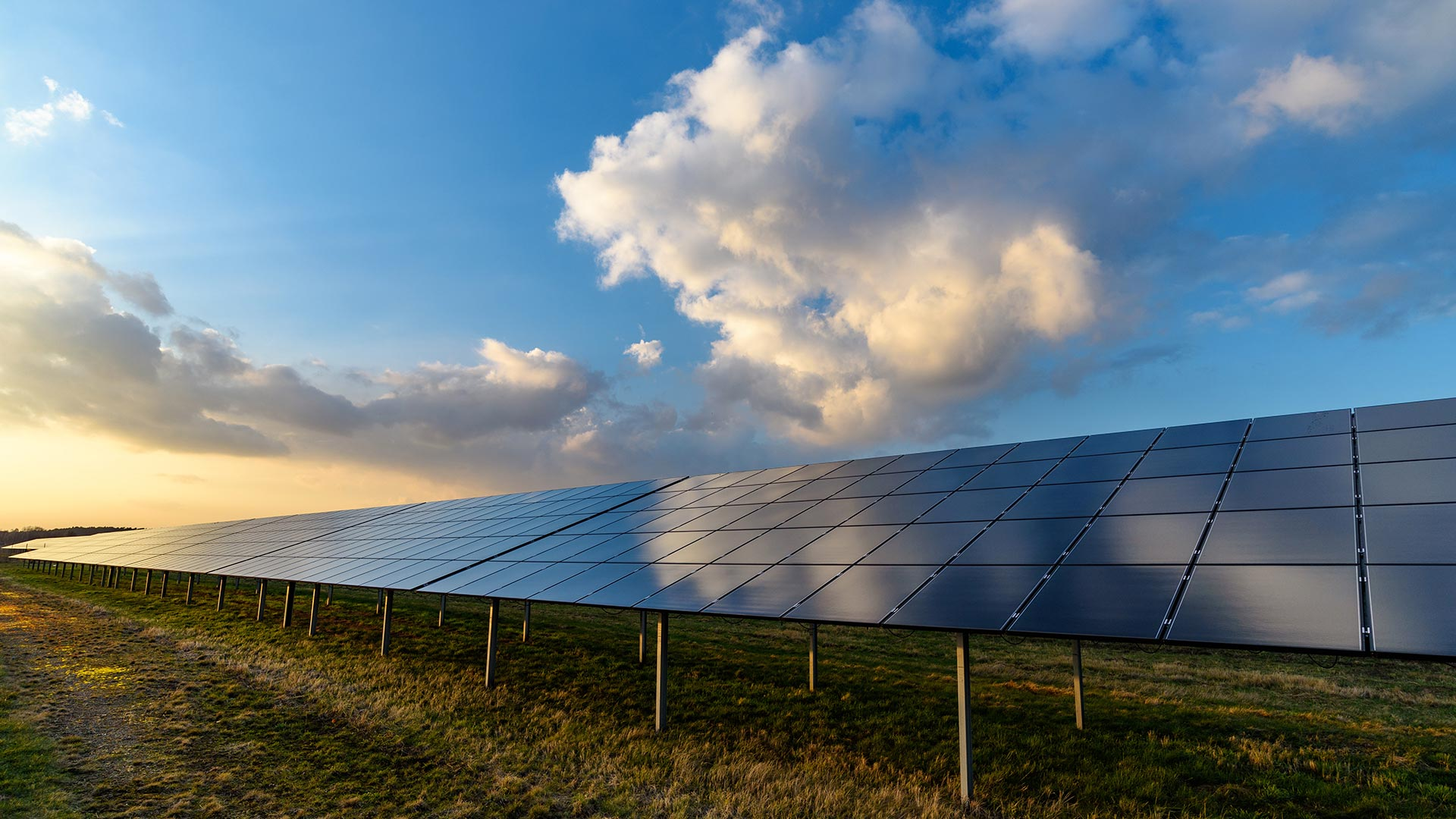 solar panels in a field with sunset