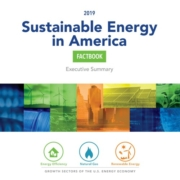cover design for 2019 sustainable energy in america factbook